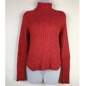 💫American Eagle Outfitters | Turtleneck Sweater